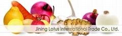 Jining Lotus International Trade Co.,Ltd.