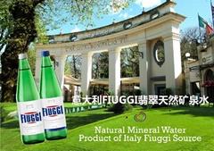 意大利FIUGGI翡翠天然矿泉水