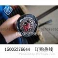 PUR防海水耐低温电缆