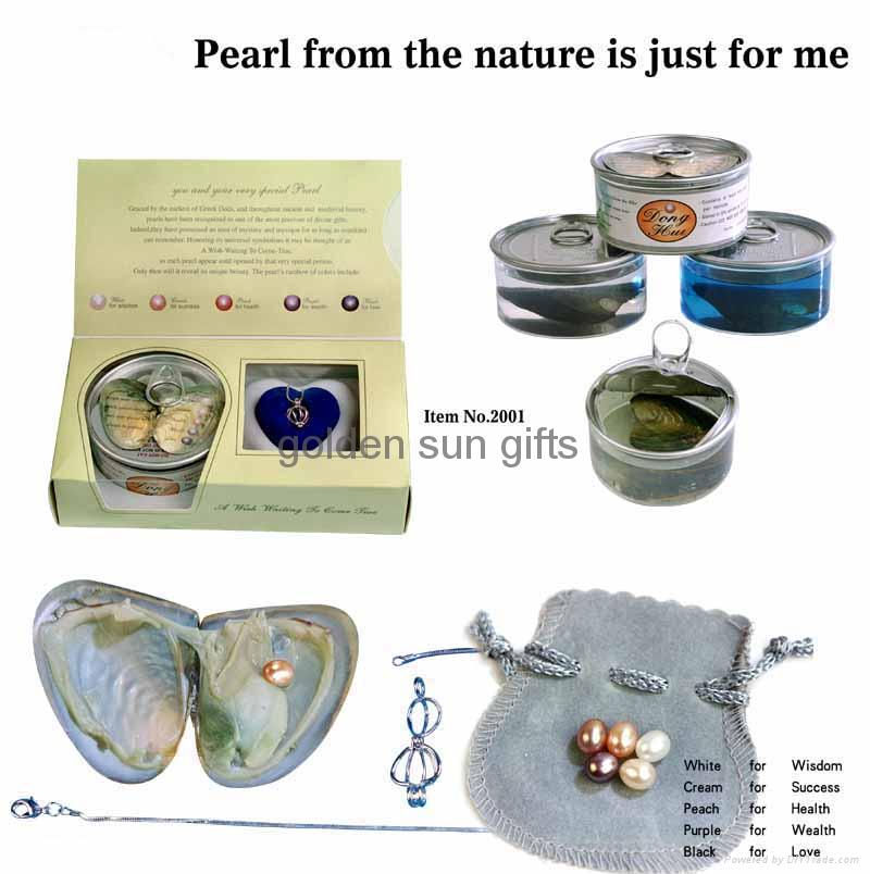 Wish Pearl Necklace Gift Set 1