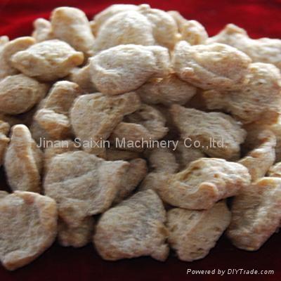 大豆组织蛋白膨化机 2
