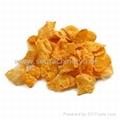 flaker/presser of Corn Flakes