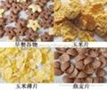 早餐膨化食品生产线 3