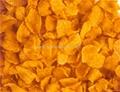 玉米片设备