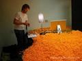 粟米条生产设备 2