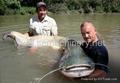 高檔漂浮魚飼料設備 2