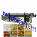 frying machine--Automatic Continuous