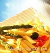 Italy Macaroni pasta pellets extruder machine
