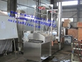 Automatic Continuous Fryer(electricity,gas or diesel)