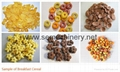 Fully Automatic cereal kelloggs corn flakes machine/production line
