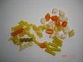 螺旋/贝壳/豌豆脆膨化食品生产线 2