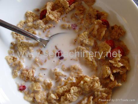 早餐谷物食品生产线 4