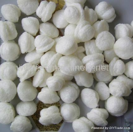 玉米預糊化膨化變性澱粉生產線 3