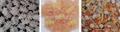 螺旋/贝壳/豌豆脆膨化食品生产线 4