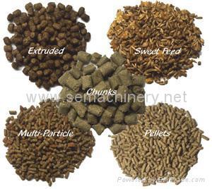 Fish feed pellet machine 5