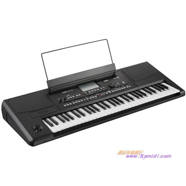 KORG Pa300自动伴奏琴 送民乐音色 2