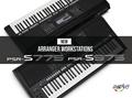 雅马哈PSR-S775电子琴 送白金音色扩展包     3