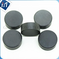 GH PCBN CBN Cutting tool blanks