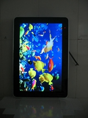 19/22inch horizontal and vertical screen display LCD Advertising PLAYER