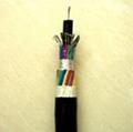 低煙低鹵阻燃電纜 1