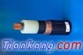 F46高溫電纜 4