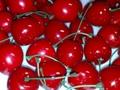 樱桃模型 1