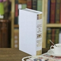 欧式烫金仿真书 装饰书假书 摄影新房书房书柜道具 假书模书盒 5