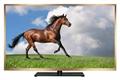 """50""""液晶電視機、工廠電視模型、學校電視機、酒店電視機 1"""
