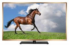 """50""""液晶電視機、工廠電視模型、學校電視機、酒店電視機"""