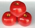 仿真水果(蘋果) 2