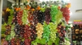 prop grapes, decorative fruits, props Fruit