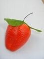 草莓模型 2