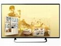 """46""""傢具展廳裝飾電視 電視模"""
