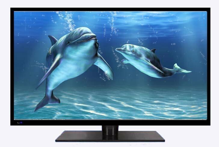 display props tv