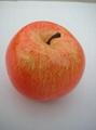 Simulation Model of fruit (apple)