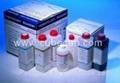 cubitainer_hematology_reagent_20L