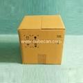 cubitainer carton Box 5