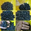 活性炭松木砂 5