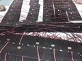 太陽電池滴膠板3V160mA