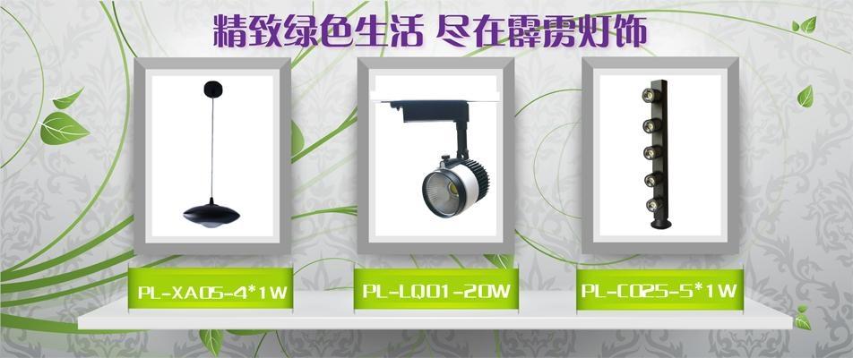 20W track light LED spotlight, COB light source high power 20W 2