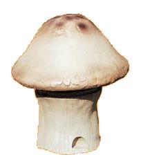 HDS-15B仿真蘑菇音箱 1