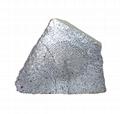 HDS-10A仿真石頭音箱