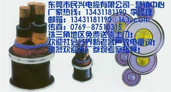 東莞民興電纜 1