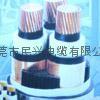 東莞國標電線電纜 3