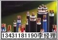 東莞國標電線電纜 4