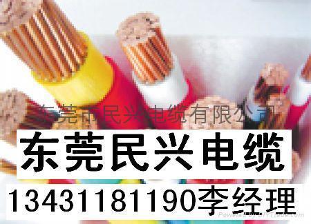 民興電纜 5