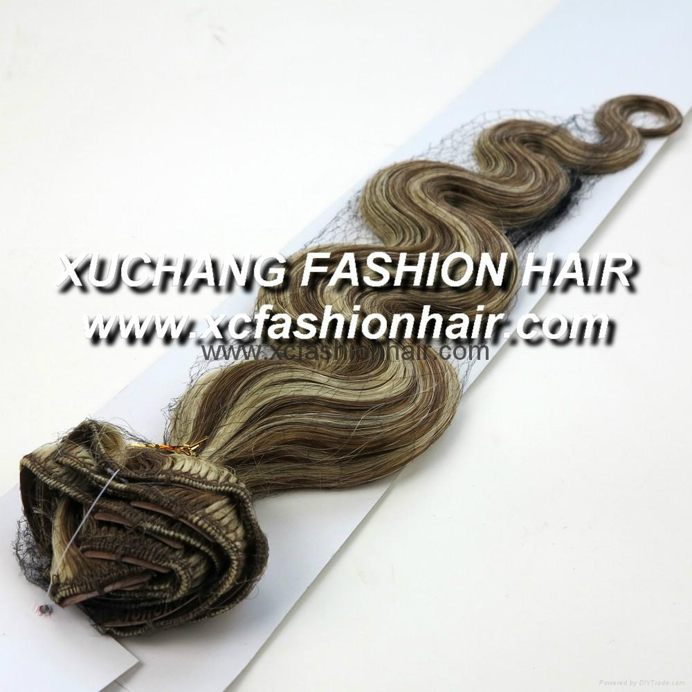 Remy clip hair extension 2