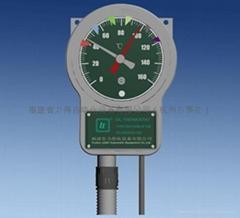 BWR繞組溫度計
