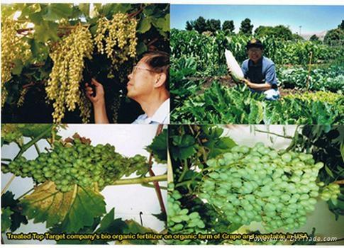 bio organic fertilizer 3