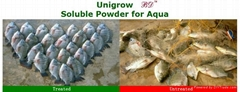 feed additive for aquatic